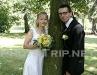 nevěsta s ženichem u stromu